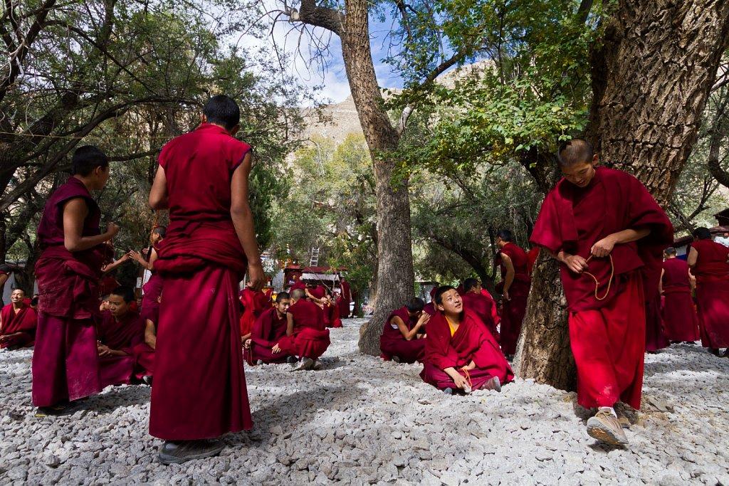 discussion ritual, Sera Monastery